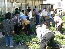 JA 海部東農業協同組合(あまひがし) -グリーンプラザで春の大売出し