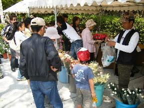 JA 海部東農業協同組合(あまひがし) -お値打ち価格で花き即売