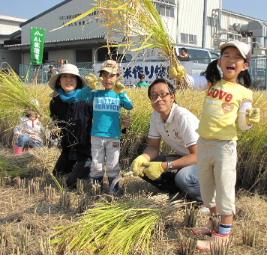 JA 海部東農業協同組合(あまひがし) -親子稲刈り体験で 農業の大切さを学ぶ