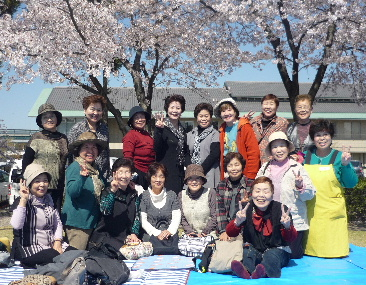JA 海部東農業協同組合(あまひがし) -満開の桜を楽しむ