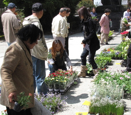 JA 海部東農業協同組合(あまひがし) -お値打ちな花きが満載の即売会