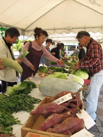 JA 海部東農業協同組合(あまひがし) -農産物品評会に良品がそろう