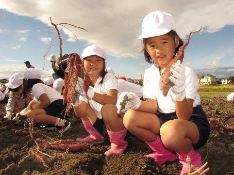 JA 海部東農業協同組合(あまひがし) -秋の実りの収穫体験