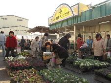 JA 海部東農業協同組合(あまひがし) -管内各地で、感謝を込めて売り出し