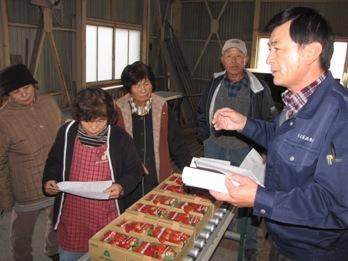 JA 海部東農業協同組合(あまひがし) -需要が高い時期に出荷始まる