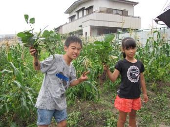 JA 海部東農業協同組合(あまひがし) -雨でも楽しかった収穫祭