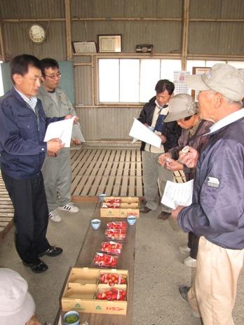 JA 海部東農業協同組合(あまひがし) -今シーズンイチゴ出荷のラストスパート