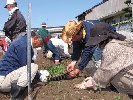 JA 海部東農業協同組合(あまひがし) -畑の学校が開校