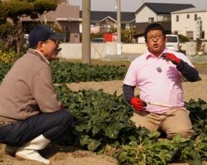 JA 海部東農業協同組合(あまひがし) -特産品「法蓮草」がTVで紹介される
