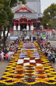 JA 海部東農業協同組合(あまひがし) -伝統の地に巨大な花のじゅうたん