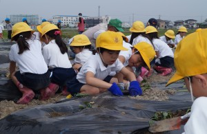 JA 海部東農業協同組合(あまひがし) -農業を体験して食の大切さを学ぶ