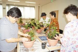 JA 海部東農業協同組合(あまひがし) -秋を感じさせる寄せ植え