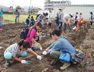 JA 海部東農業協同組合(あまひがし) -サツマイモ収穫・調理