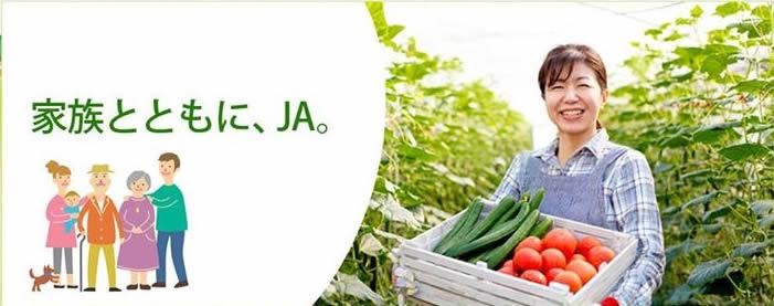 JA 海部東農業協同組合(あまひがし)のメインイメージ