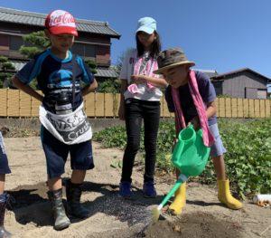 JA 海部東農業協同組合(あまひがし) -子どものうぎょうきょうどうくみあい 秋冬野菜の種まきをしよう!