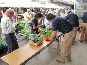 JA 海部東農業協同組合(あまひがし) -グリーンプラザ感謝祭 ~地域農業振興のために~