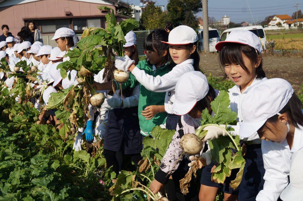 JA 海部東農業協同組合(あまひがし) -農業クラブ 収穫の楽しさと喜びを