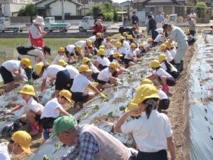JA 海部東農業協同組合(あまひがし) -農業体験 育てる楽しさ知って農業に興味を