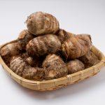 JA 海部東農業協同組合(あまひがし) -高温好みで乾燥を嫌う、サトイモ作りのポイント
