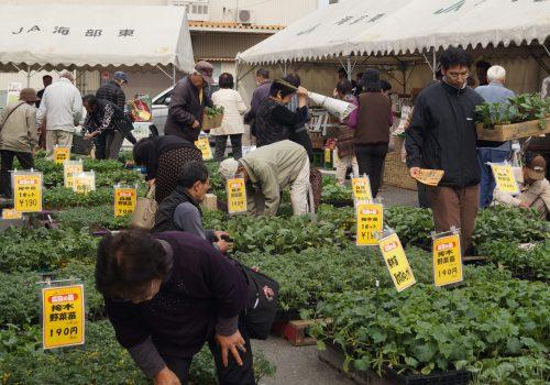 JA 海部東農業協同組合(あまひがし) -感謝祭 日頃の感謝をこめて