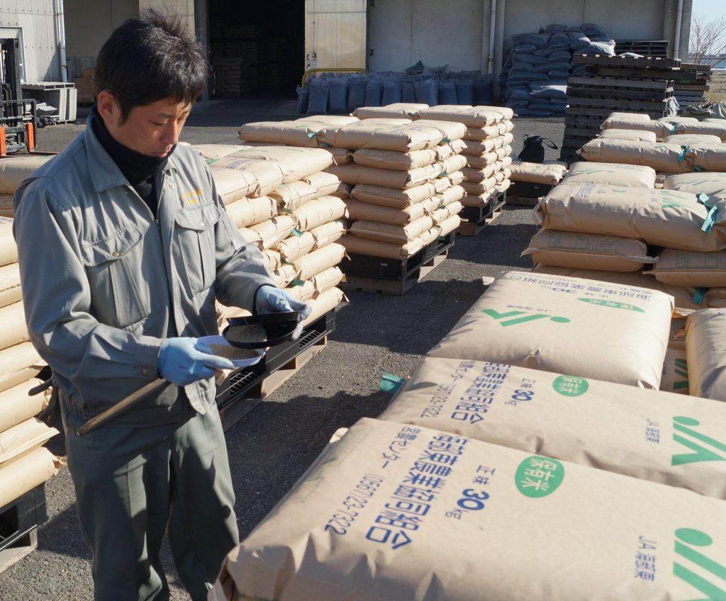 JA 海部東農業協同組合(あまひがし) -平成29年産米検査 大半が1等米で品質良好