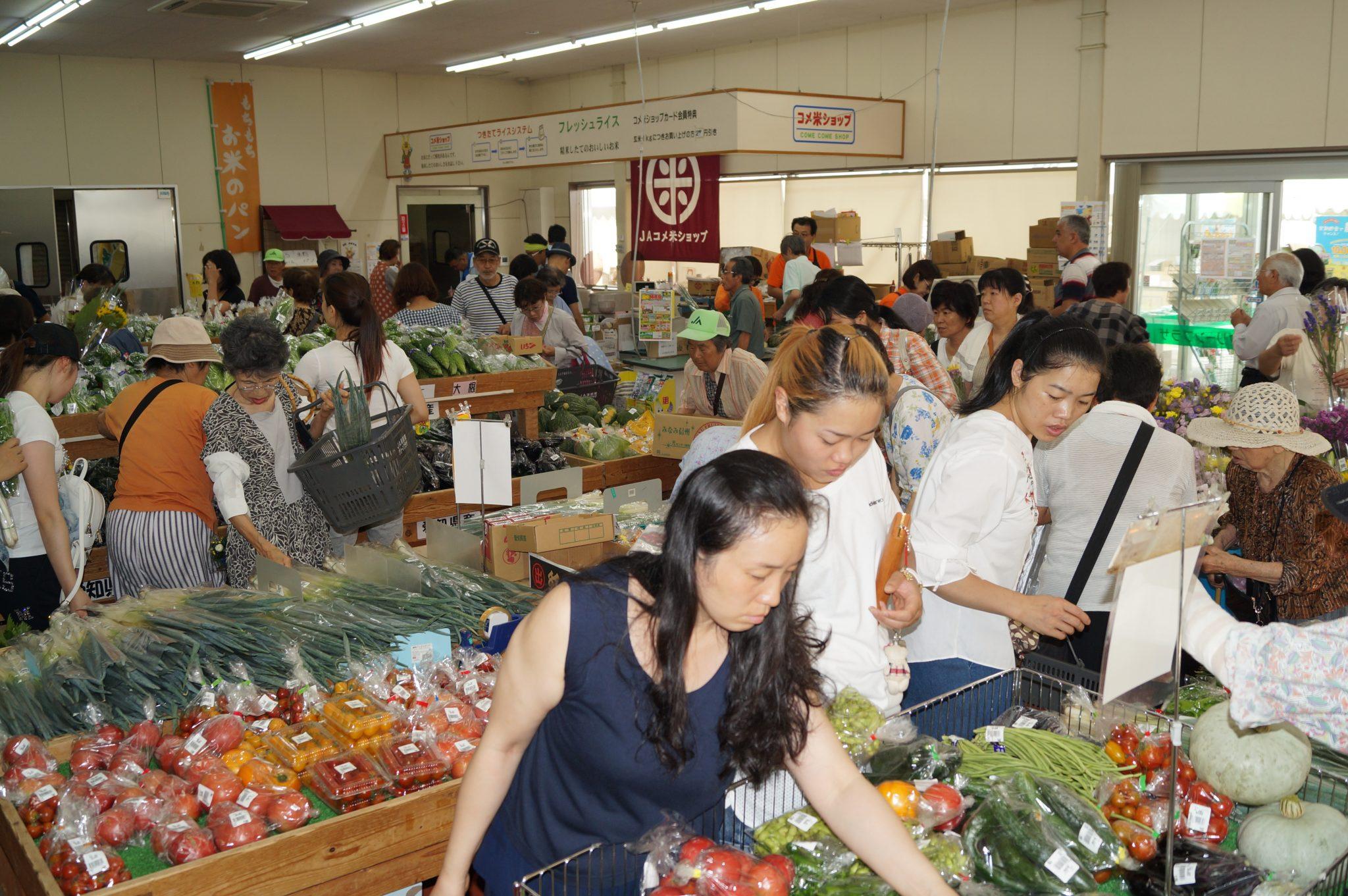 JA 海部東農業協同組合(あまひがし) -グリーンプラザ 夏祭り特売会開催