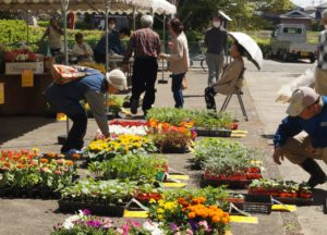 JA 海部東農業協同組合(あまひがし) -あま市花き園芸組合 地域の花きを PR