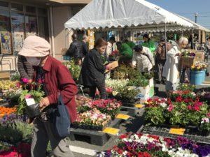 JA 海部東農業協同組合(あまひがし) -神守支店・七宝支店 『春の感謝祭』開催