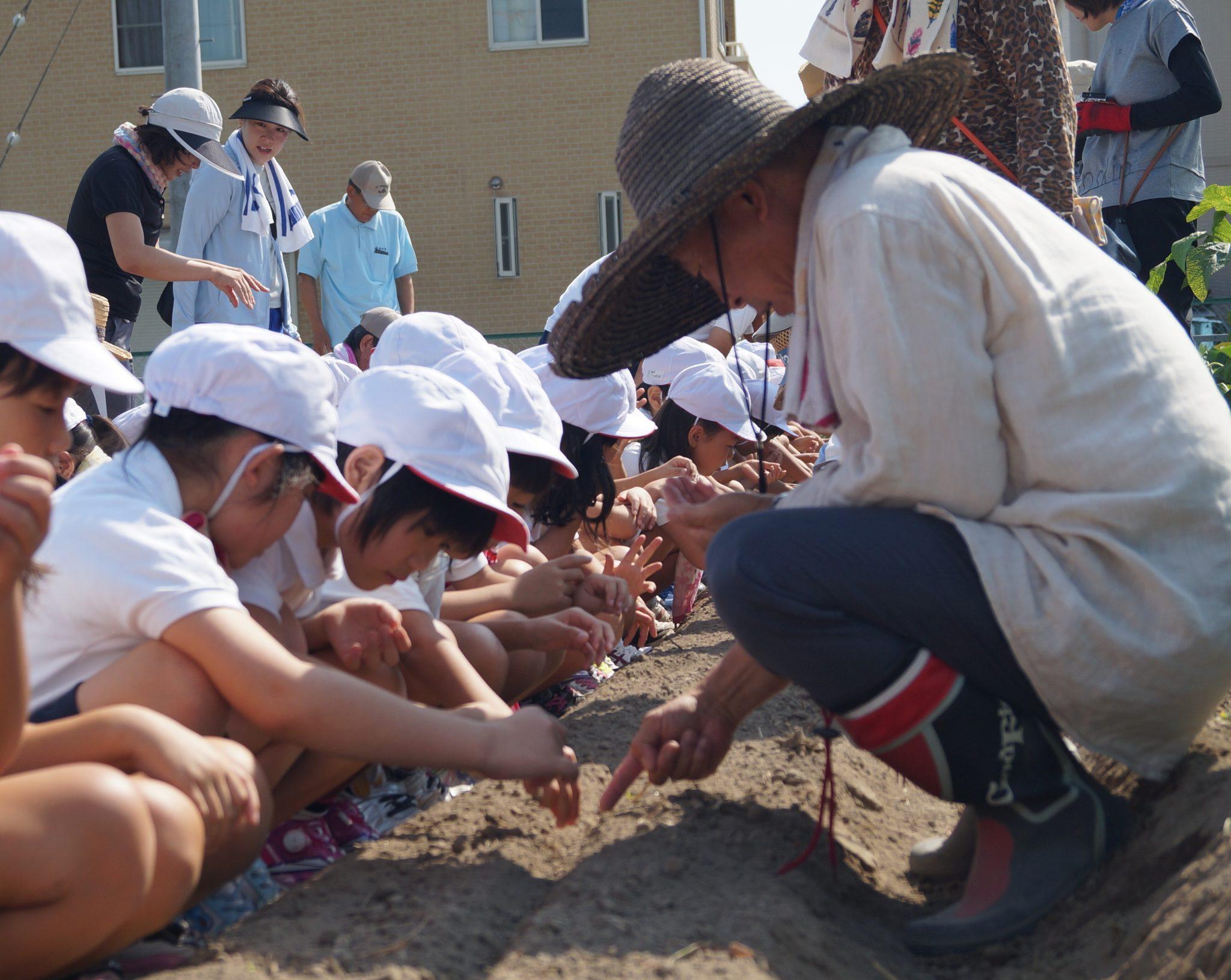 JA 海部東農業協同組合(あまひがし) -農業体験 小学生が農業を体験
