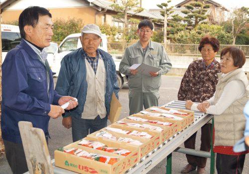 JA 海部東農業協同組合(あまひがし) -イチゴの出荷はじまる