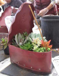 JA 海部東農業協同組合(あまひがし) -多肉植物で寄せ植え