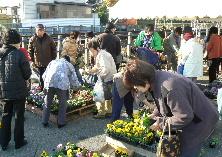 JA 海部東農業協同組合(あまひがし) -農協感謝祭でにぎわう