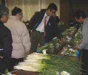 JA 海部東農業協同組合(あまひがし) -特産野菜を品評
