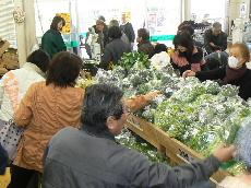 JA 海部東農業協同組合(あまひがし) -グリーンプラザで決算セール