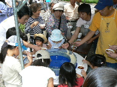 JA 海部東農業協同組合(あまひがし) -文化会館で農協まつり開く