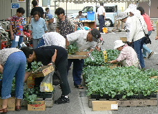 JA 海部東農業協同組合(あまひがし) -グリーンプラザで秋の大売出し