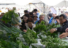 JA 海部東農業協同組合(あまひがし) -新鮮野菜をお値打ちに即売