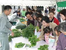 JA 海部東農業協同組合(あまひがし) -良品ぞろいの農産物品評会