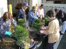 JA 海部東農業協同組合(あまひがし) -松竹梅で新年を迎える準備