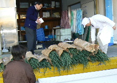 JA 海部東農業協同組合(あまひがし) -「越津ねぎ」が学校給食に登場