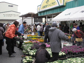 JA 海部東農業協同組合(あまひがし) -日頃のご愛顧に応え、感謝祭を行う