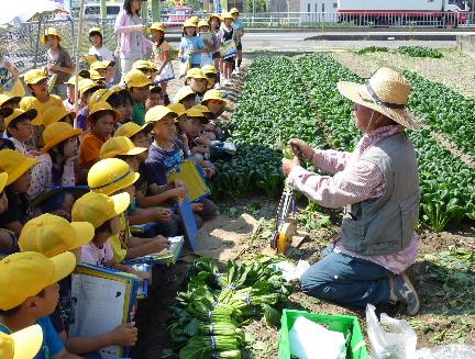 JA 海部東農業協同組合(あまひがし) -地元野菜を通して農業を知ろう