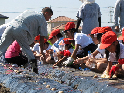 JA 海部東農業協同組合(あまひがし) -ジャガイモ栽培を通じ 農業に触れる