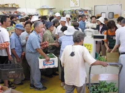 JA 海部東農業協同組合(あまひがし) -秋冬野菜の苗が大好評 秋の大売出し