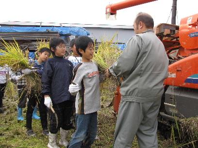 JA 海部東農業協同組合(あまひがし) -稲刈り体験通じ 農業を学ぶ