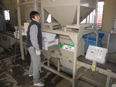 JA 海部東農業協同組合(あまひがし) -平成23年産米を 播種作業