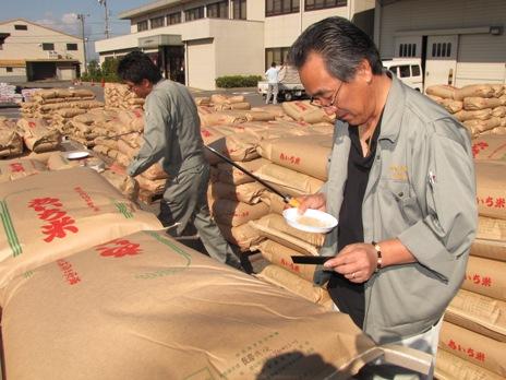 JA 海部東農業協同組合(あまひがし) -平成24年産米の米検査が始まる
