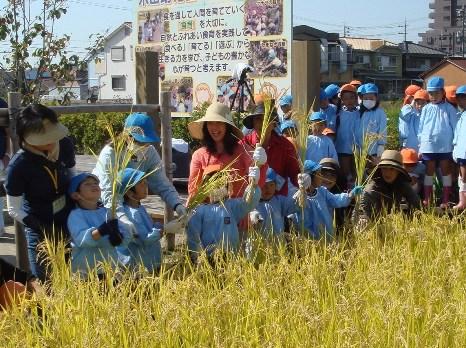 JA 海部東農業協同組合(あまひがし) -10月15日木田幼稚園(約120人)