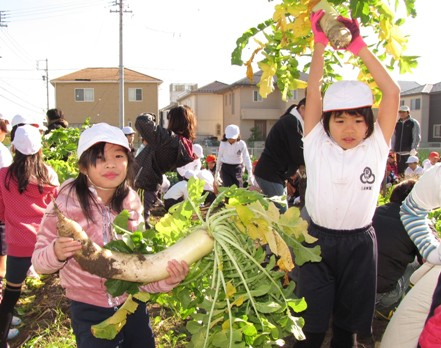 JA 海部東農業協同組合(あまひがし) -苗と種が大きく育って大豊作