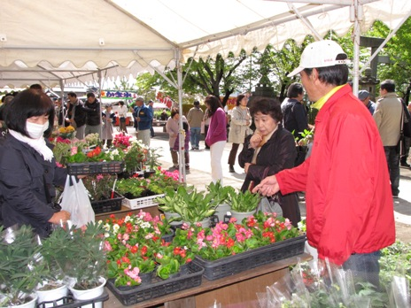 JA 海部東農業協同組合(あまひがし) -お値打ちに花きを販売